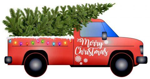 Levering af juletræer fra Mosegaarden